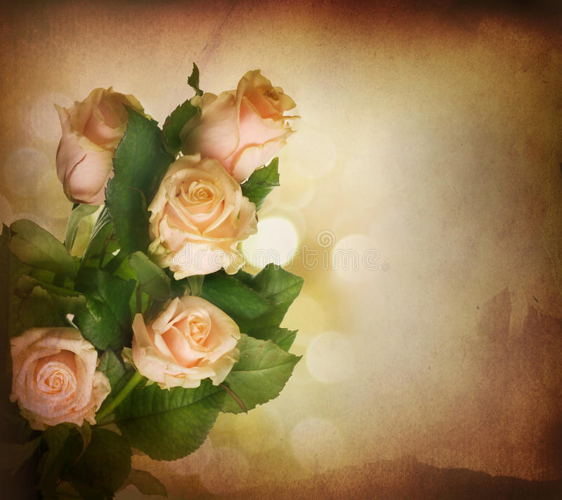Rose.Vintage labró imagen de archivo