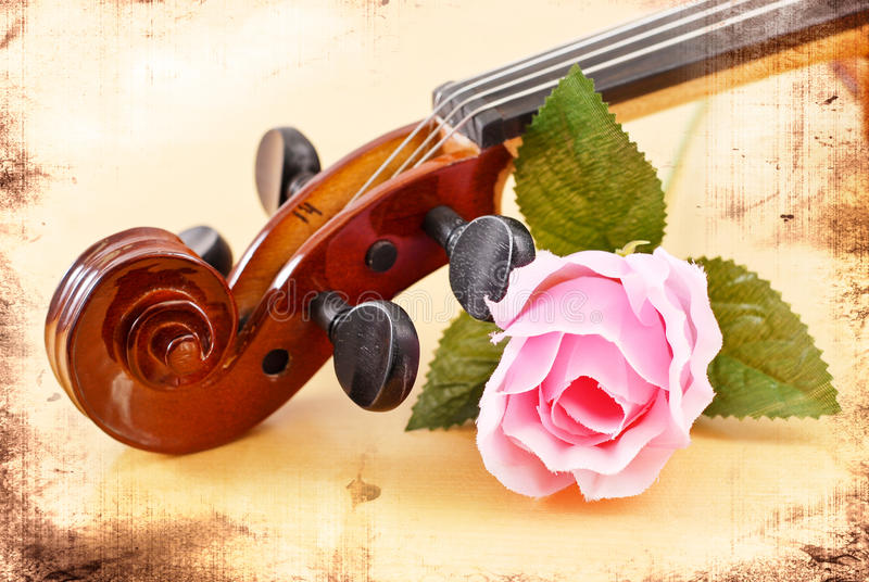 Rose with Violin. Head Stock in Grunged Texture royalty free stock photo