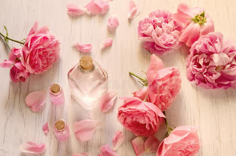 Rose water in glass bottle and pink flowers with petals on white wooden background. SPA or aromatherapy concept stock photo