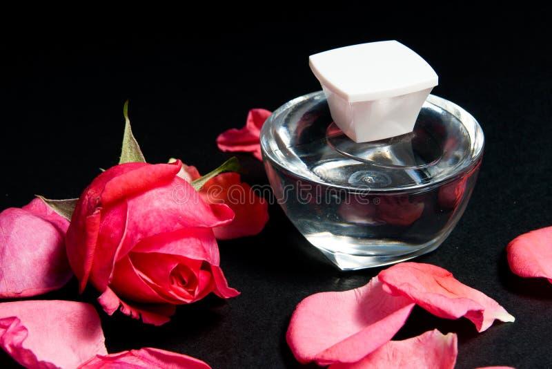 Rose wesentlich lizenzfreies stockbild