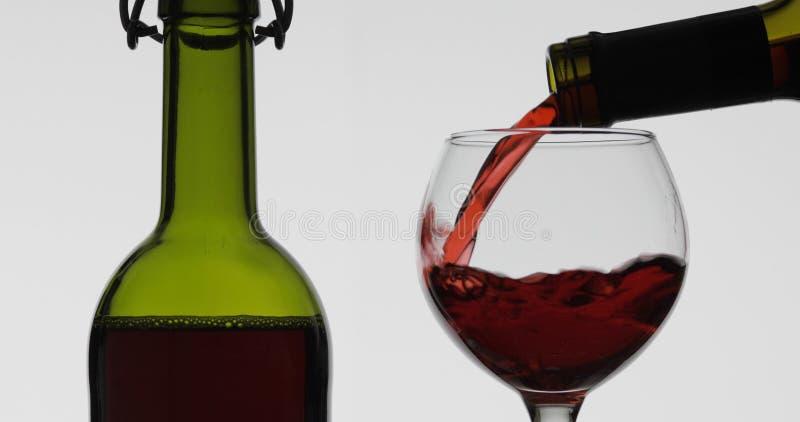 Rose Wine O vinho tinto derrama dentro o vidro de vinho sobre o fundo branco fotos de stock royalty free