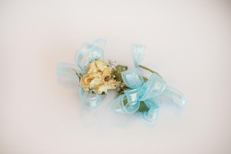 Rose wrist corsage isolated on white. stock images