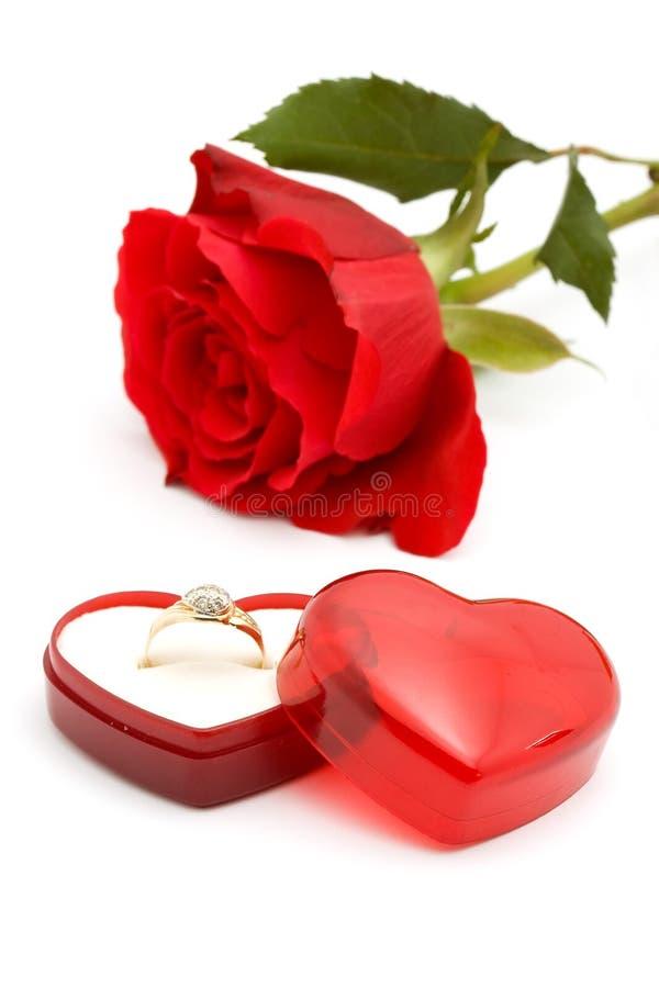 Rose y anillo fotos de archivo libres de regalías