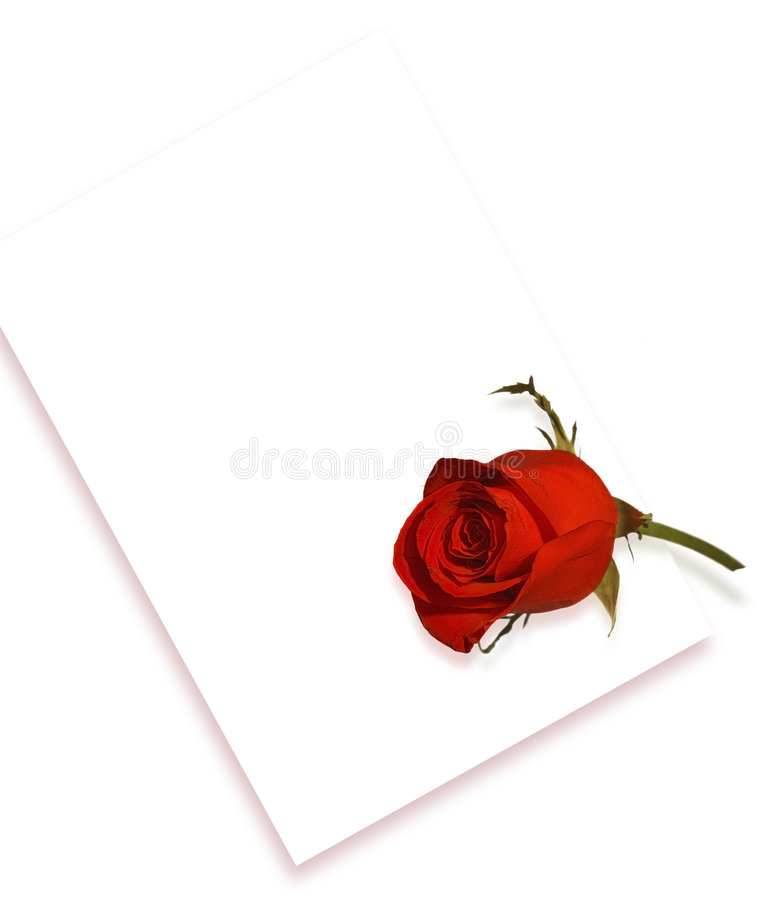 Rose Y Carta Fotos de archivo libres de regalías