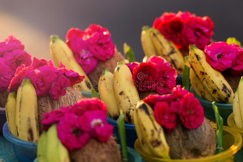 Rose y el plátano venden en el templo hindú de Kapaleeshwarar, Chennai, imagen de archivo libre de regalías