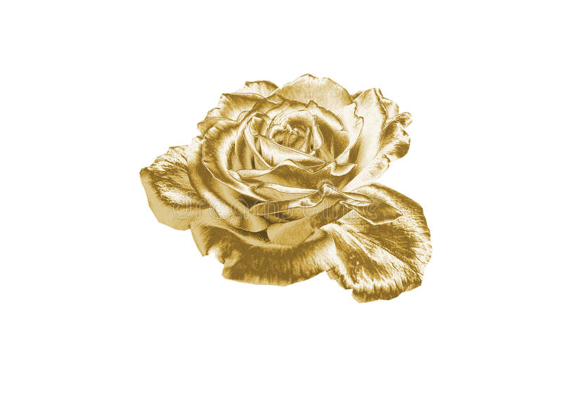 rose złota obrazy royalty free
