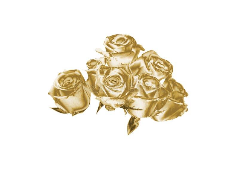 rose złota zdjęcie stock