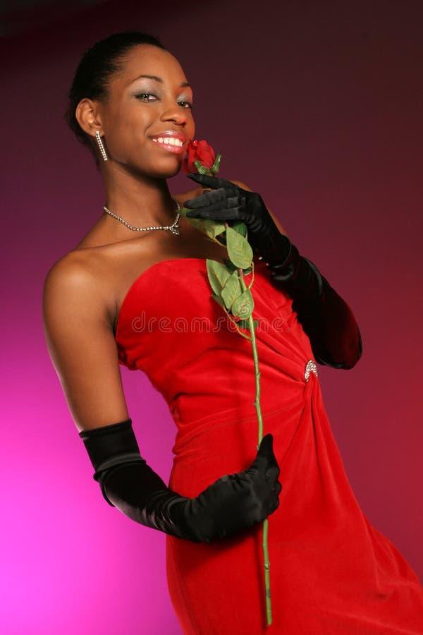 rose zapach przerwę zdjęcie stock