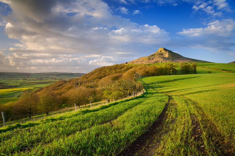 Roseberry Topping in green, England. Beautiful sunset the Roseberry Topping. Beautiful view, green grass, field. I love a spring ! East Riding of Yorkshire stock image