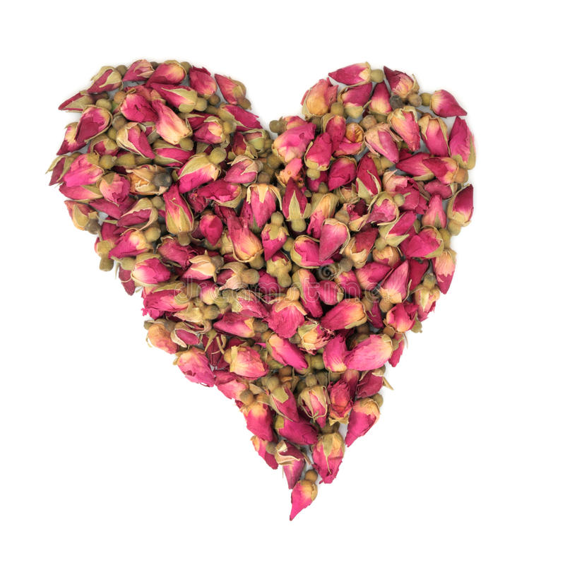 Rosebud Heart Beauty Stock Images