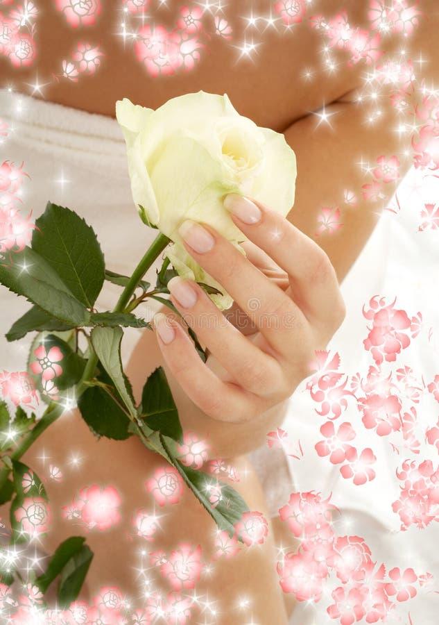Rosebud umgeben durch Blumen lizenzfreies stockfoto