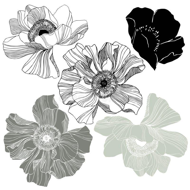 rosebuds stock abbildung