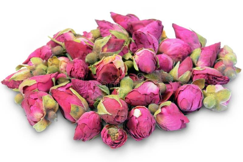 Rosebuds secchi su un bianco. fotografia stock