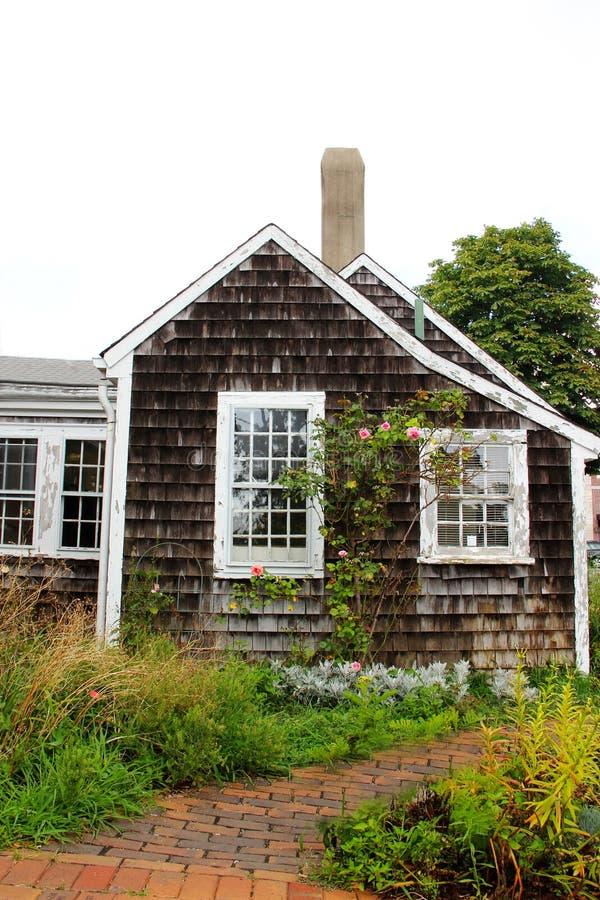 Rosebush på sidan av ett Cape Cod hem royaltyfria foton
