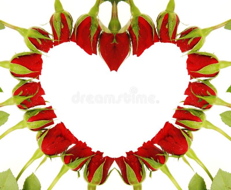 roseheart 向量例证