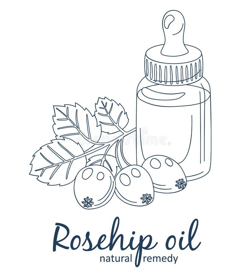 Rosehip jagody w butelki ilustracji i olej Istotnego oleju kresk?wki wektoru ikona obraz royalty free