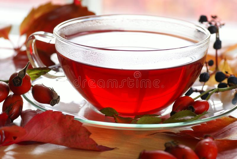 Rosehip tea. Cup of fruit rose-hip tea and autumn leaves and fruits on a table stock photography