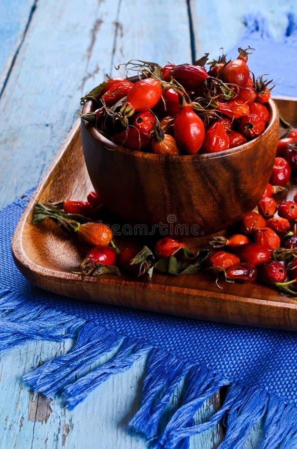 Rosehips foto de stock