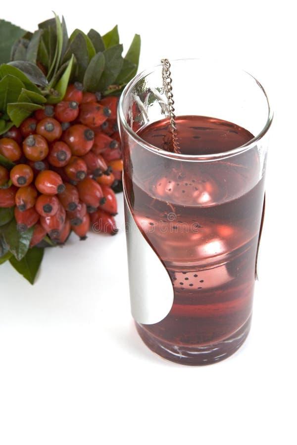 Download Rosehips herbaciani zdjęcie stock. Obraz złożonej z dobry - 4504238