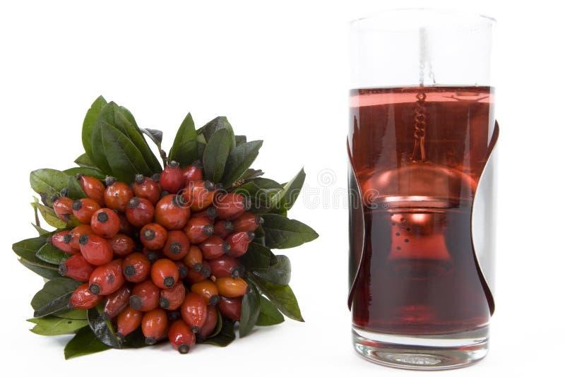 Download Rosehips herbaciani zdjęcie stock. Obraz złożonej z kopiasty - 4504250