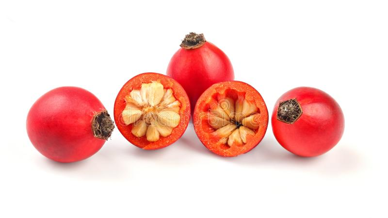 Rosehips Rosa Canina fruits, one cut in half isolated on white background stock images