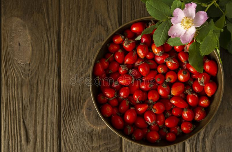 Rosehips in vintage brass bowl and a branch of rosehip bush with a pink rosehip flower stock photos