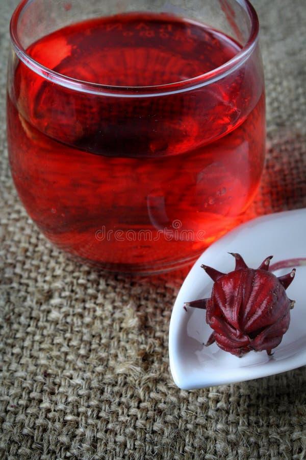 从Rosella或roselle果子的新饮料 免版税图库摄影