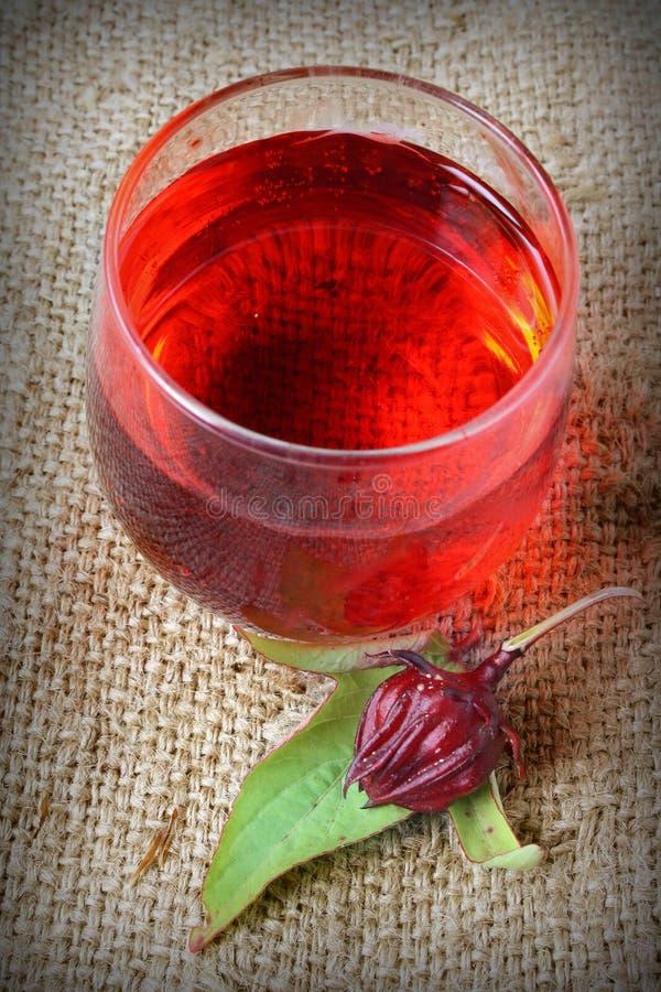 从Rosella或roselle果子的新饮料 库存图片