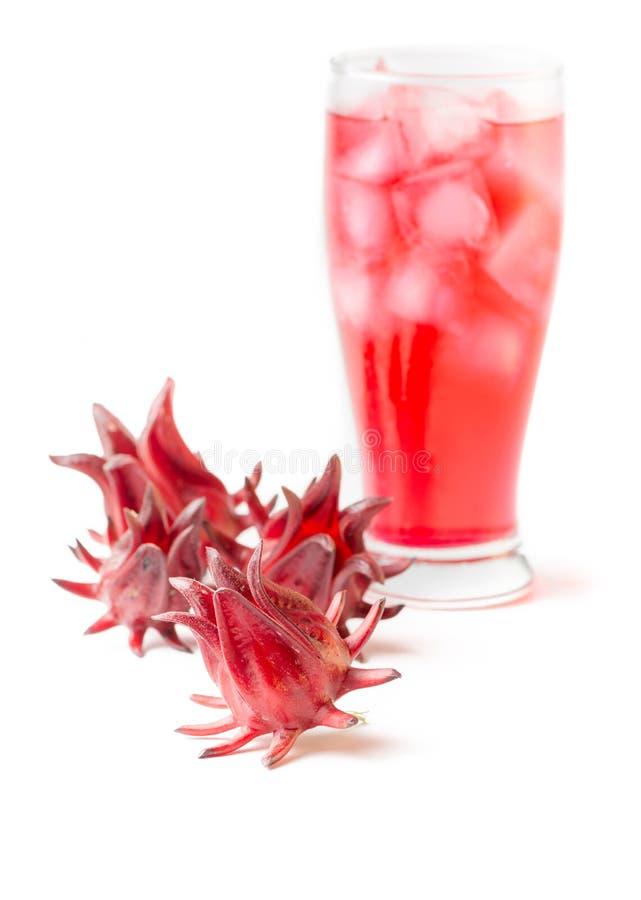 Roselle owoc przed napojem odizolowywającym zdjęcia stock