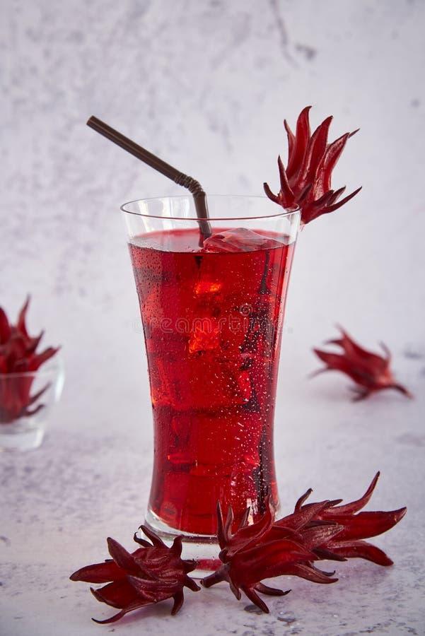 Roselle sok, Tradycyjny Tajlandzki Ziołowy Zimny Miękki napój I Dekorujący Świeżym Roselle zdjęcie stock