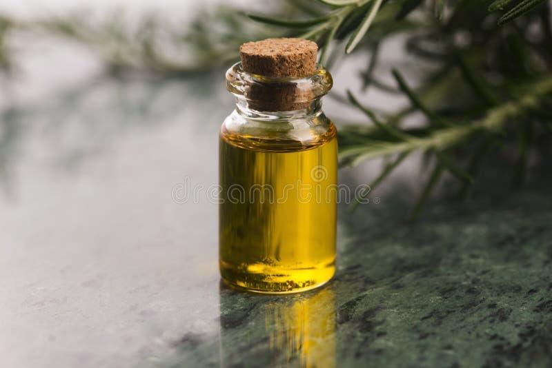 rosemary эфирного масла стоковые изображения