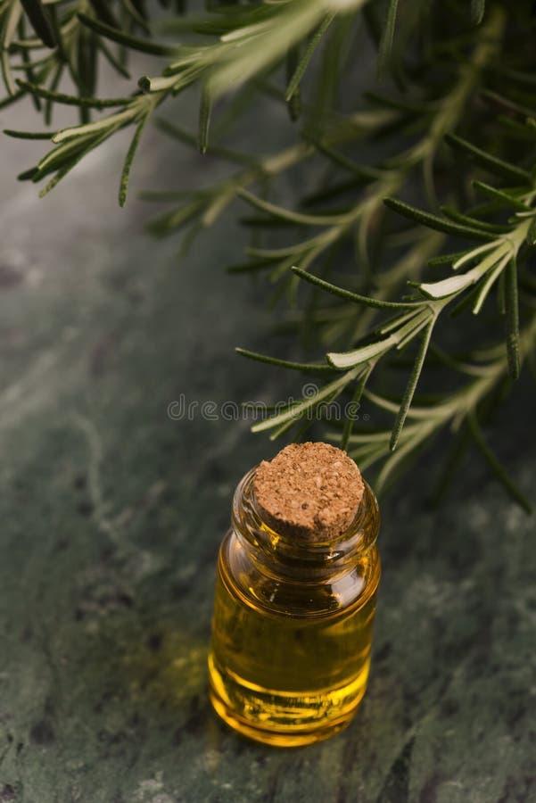 rosemary эфирного масла стоковое изображение