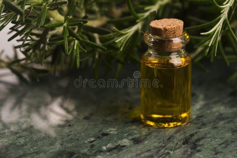 rosemary эфирного масла стоковое изображение rf