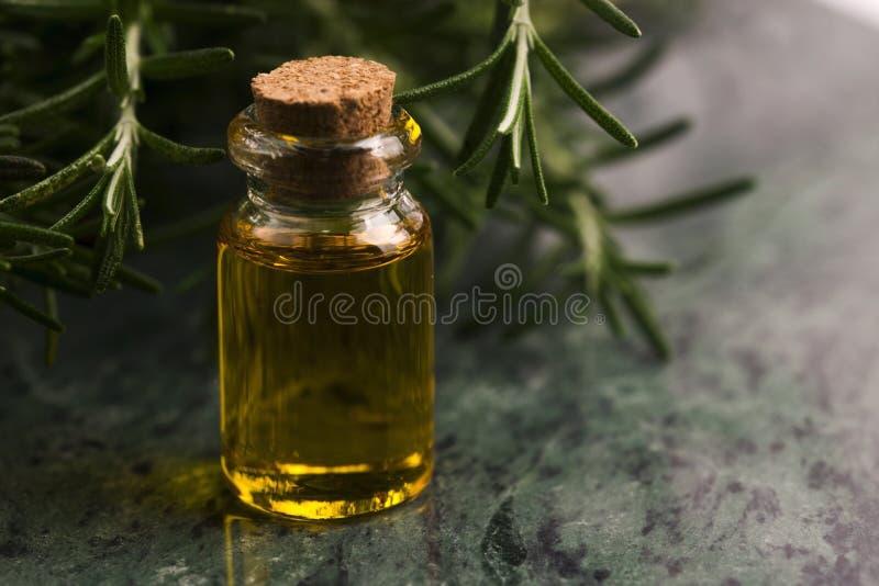 rosemary эфирного масла стоковые изображения rf