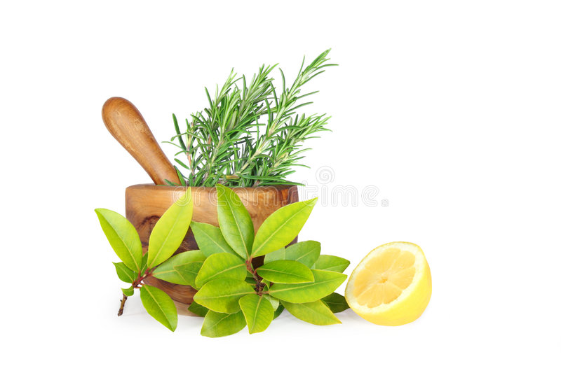 Rosemary and Bay Leaf Herbs stock photo