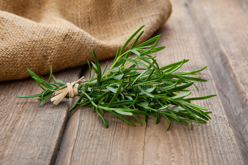 Download Rosemary Bound Stock Photo - Image: 83724143