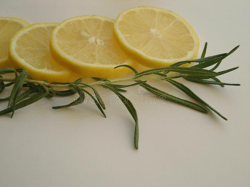 Rosemary branch with lemon stock photography