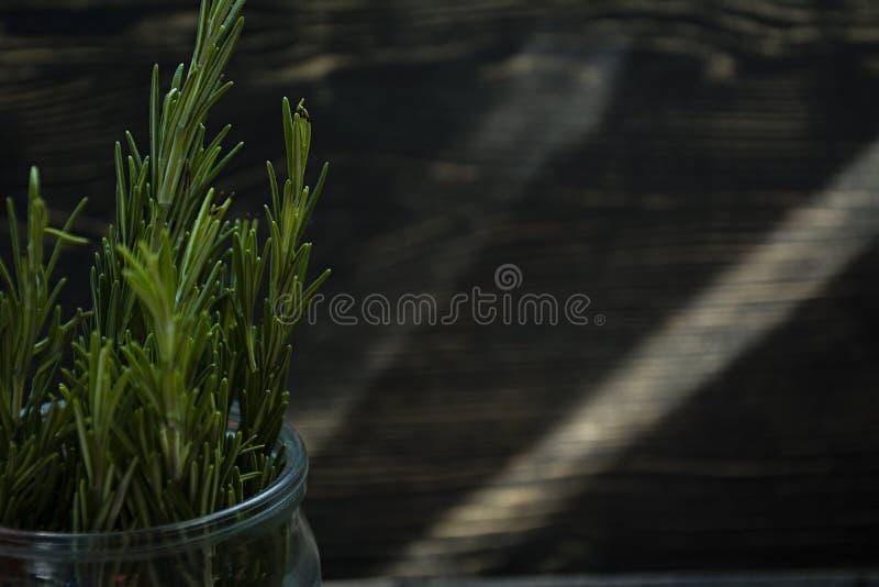 Rosemary en un tarro de cristal, ramas del romero fresco, fondo de madera del vintage imágenes de archivo libres de regalías