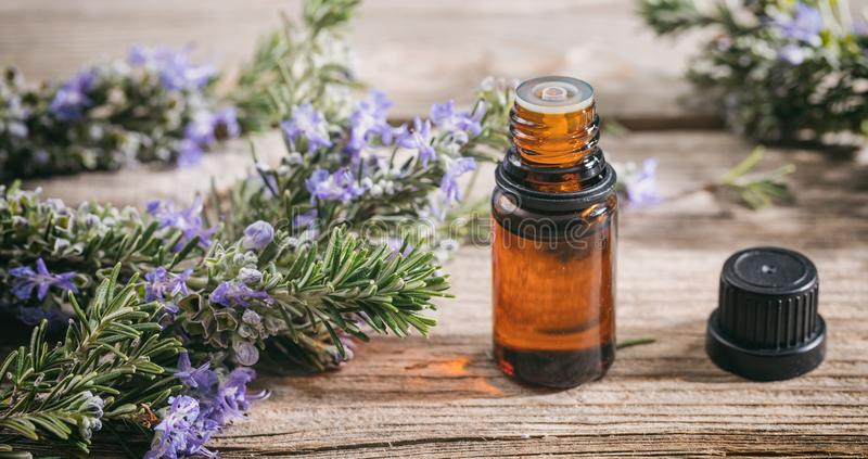 Rosemary essential oil and fresh blooming twig on a wooden table, closeup view royalty free stock images