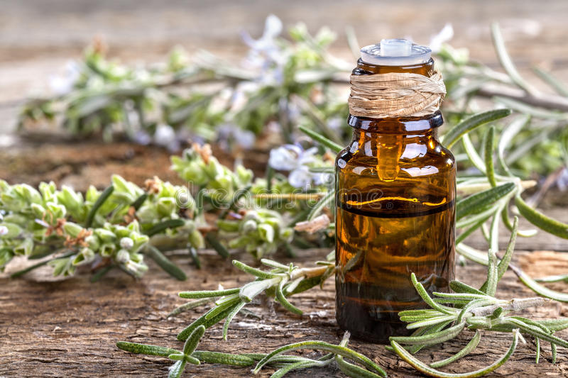 Rosemary essential oil. Essential oil made from rosemary on rustic table stock photos