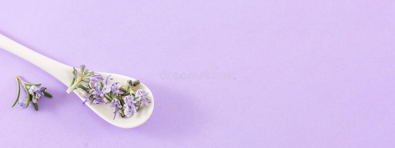 Rosemary flowers in a spoon stock image