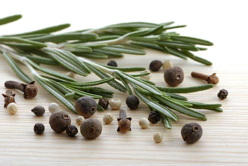 Rosemary, granello di pepe e chiodi di garofano fotografie stock