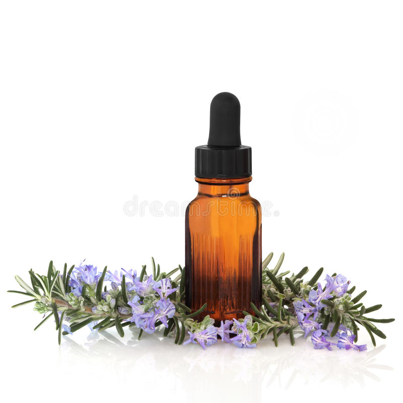 Rosemary Herb Essence. Rosemary herb leaf and flower sprigs with aromatherapy essential oil glass bottle, isolated over white background with reflection stock image