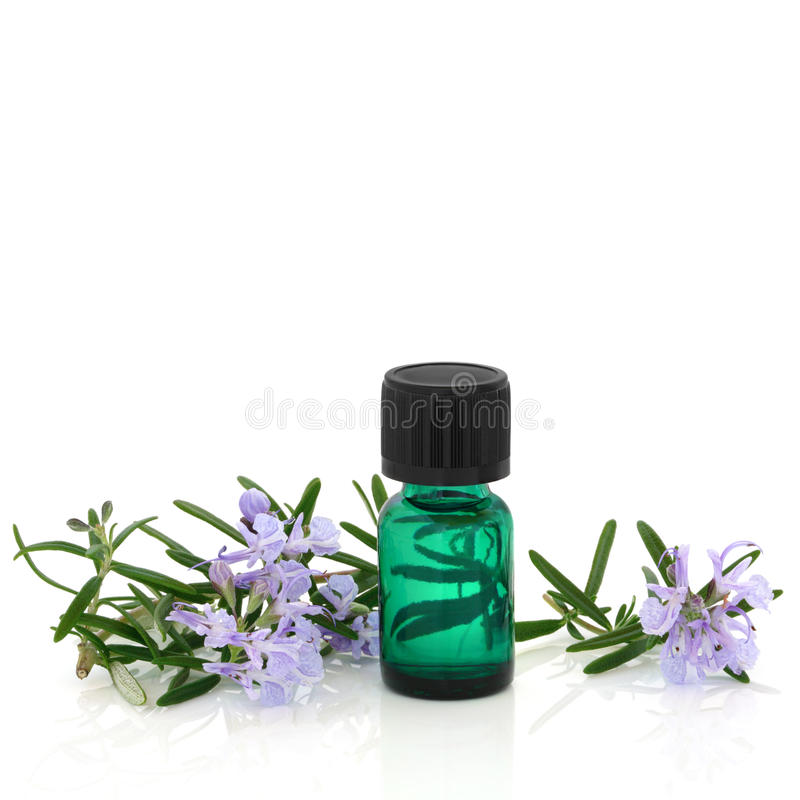Rosemary Herb Flowers And Essence Stock Photo
