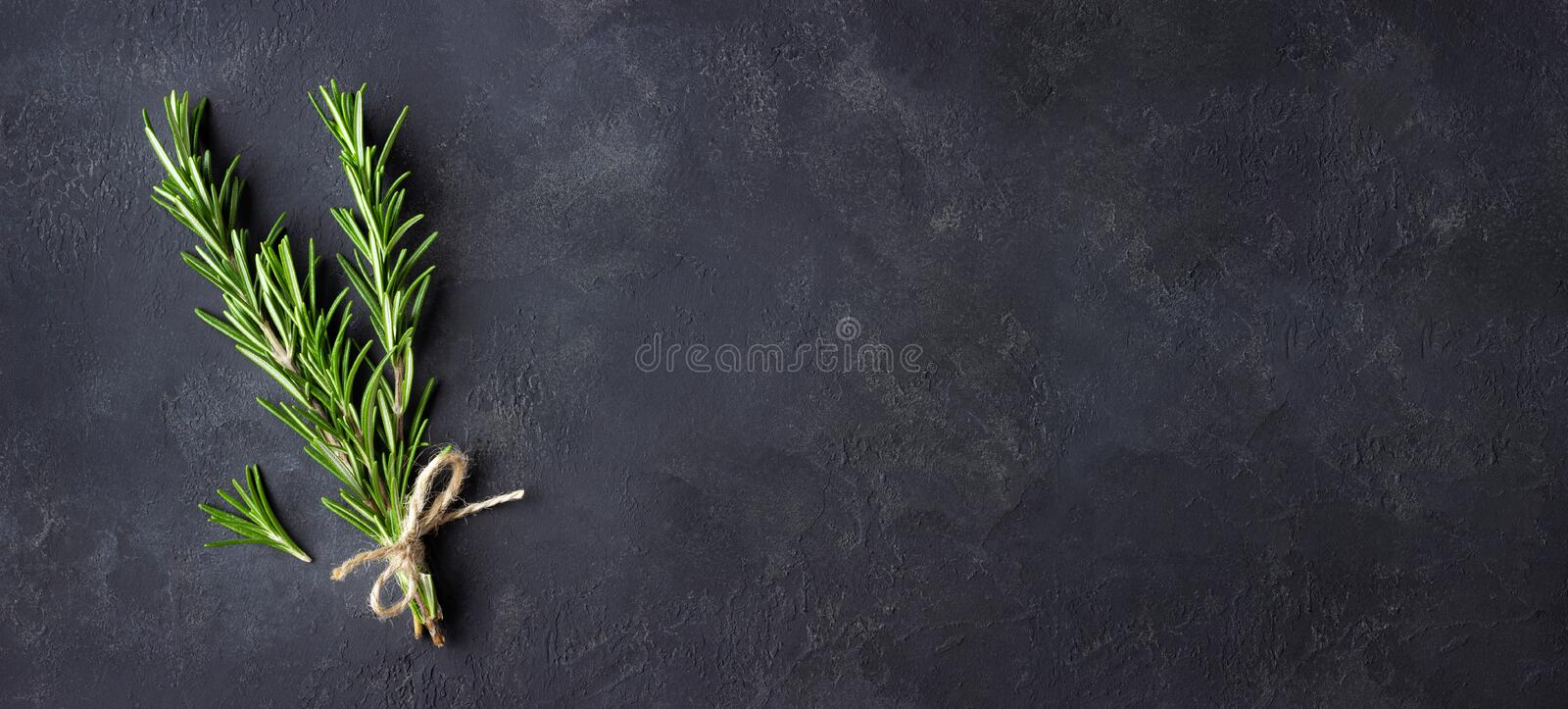Rosemary herbs on dark stone background. Copy space for menu or recipe. Flat Lay stock image