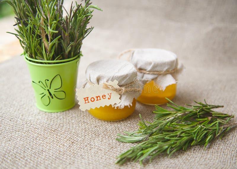 Rosemary-Honig stockfoto