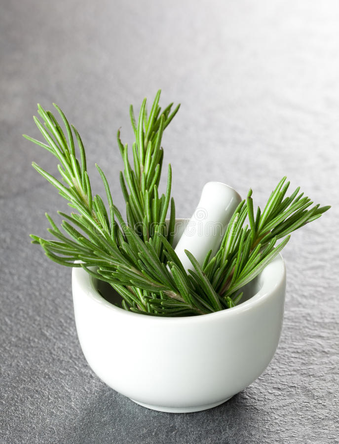 Free Rosemary In A Mortar Stock Images - 17427654