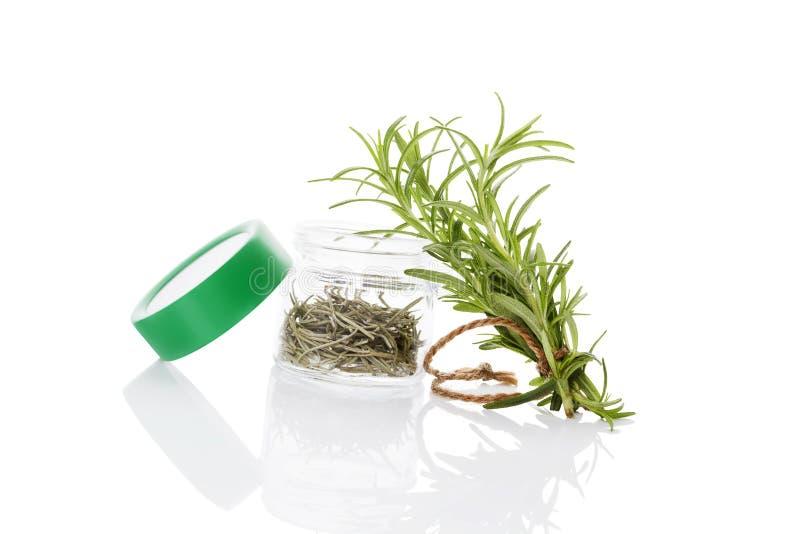 Rosemary, kulinarische aromatische Kräuter stockfotos