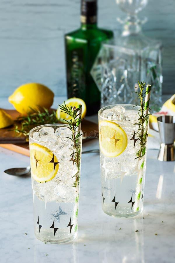Rosemary Lemon Gin Fizz Alcoholic coctail royaltyfria bilder