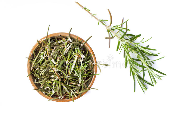 Rosemary plant in a wooden bowl isolated stock photo